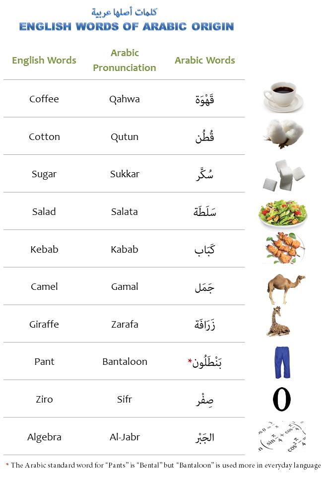English vocabulary originated from Arabic